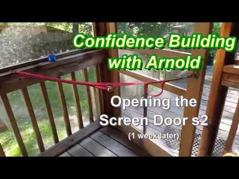 Confidence Building w Arnold - Opening the Screen Door s2