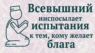 Всевышний ниспосылает испытания к тем, кому желает блага | Ислам-Хаджи