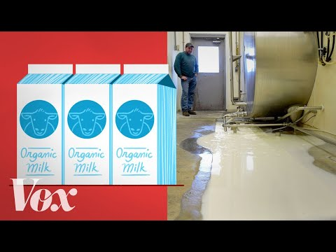 Why American farmers are throwing out tons of milk