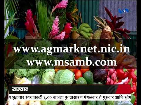 Krishivarta Bajarbhav - 26 June 2018 - कृषीवार्ता बाजारभाव