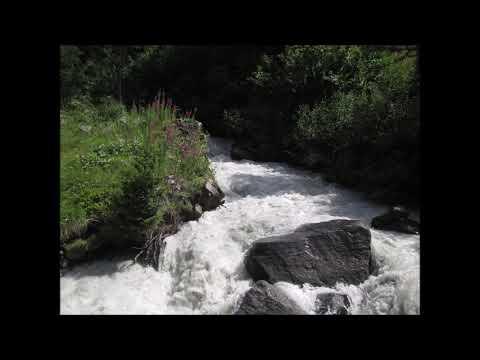 rav g. spingarn : les badim (barres) du aronn (terouma 5779)