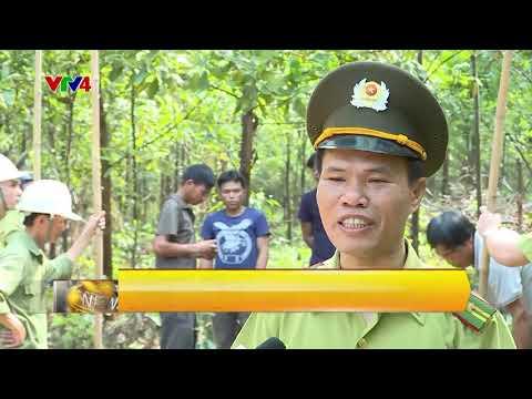 VTV News 15h - 16/05/2018