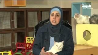 أردنية تعيش مع أكثر من 100 قطة في منزلها