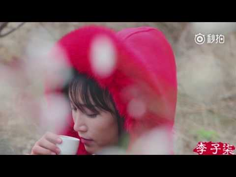 Li Ziqi - 李子柒 - EnSub - How to make strawberry wine