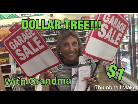 Dollar Tree w/ my Grandma!|Hannahs World