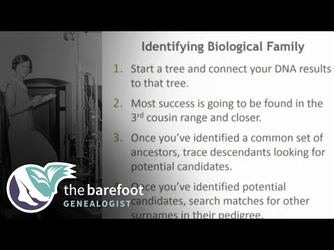 More Tips for Identifying Biological Family | AncestryDNA