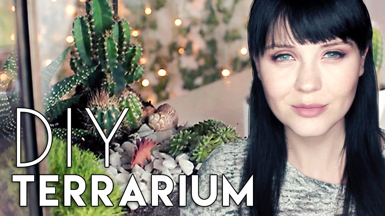 diy terrarium selbst bauen youtube. Black Bedroom Furniture Sets. Home Design Ideas