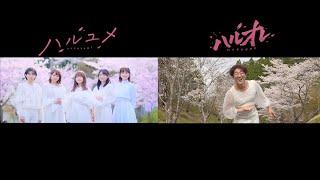 【MV比較】女子メンバーの「ハルユメ」とよっちの「ハルオレ」のMVを並べてみたら面白すぎたwww【ボンボンTV】