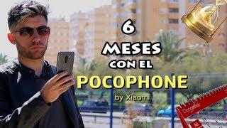 6 MESES con el POCOPHONE F1 | ¿Funcionará Bien? | Review