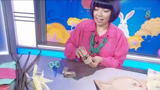 Singapore Channel 8 News Craft segment