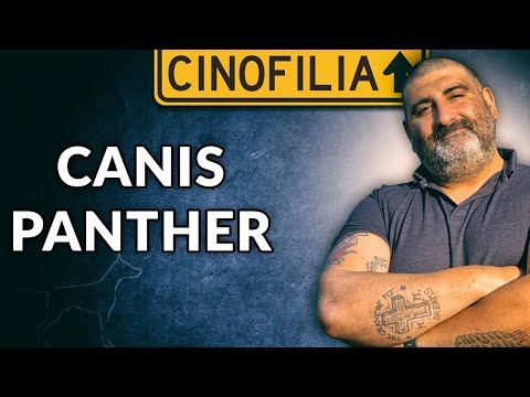 Canis Panthers