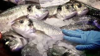 Pescado azul en Condis