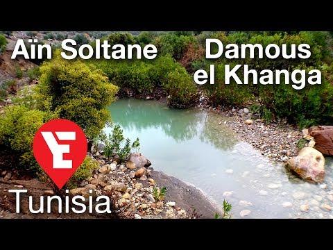 Aïn Soltane | Damous El Khanga | Exploring Tunisia