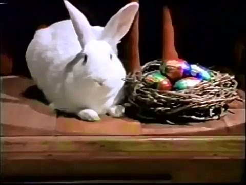 Your Pet Could Be The New Cadbury Star In This Year's Easter Commercial