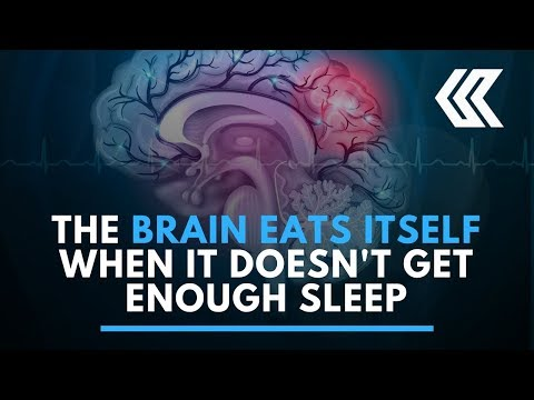 The brain eats itself when it doesn't get enough sleep
