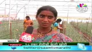 Swati Shingade
