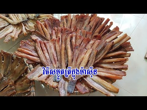 How To Dry A Fish In Machine   Homemade Dried Fish   Camdryfish EP03