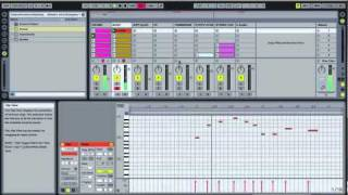 Ableton Beginner Tutorial - Music Production - Lesson 2 Session View