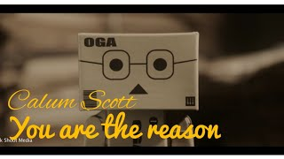 You Are The Reason - Calum Scott Lyric Terjemahan Danbo Animation