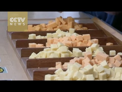 South African Cheese Festival: thousands flock to Cape Town for a taste