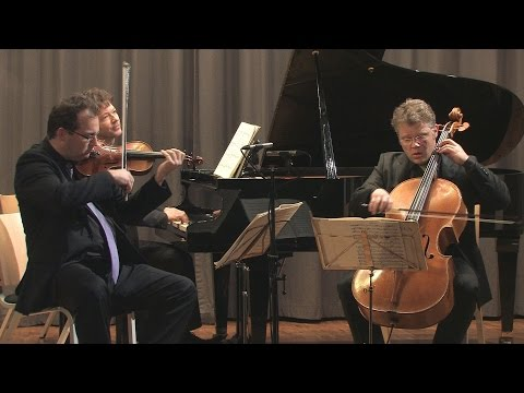 Beethoven piano trio no 2 op 1/2 - 1st movement - JOHANNES-KREISLER-TRIO