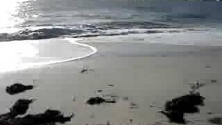 Plage sables blancs Lesconil
