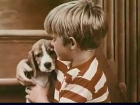 Chuck Wagon Dog Food Commercial Song