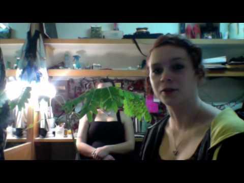 Robin's Interlochen Arts Academy Vlog #44