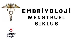 Embriyoloji, Menstruel Siklus, Tıp Dersleri, Serdar Akgün