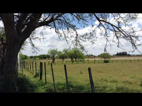 Farm in Uruguay with 10 hectares