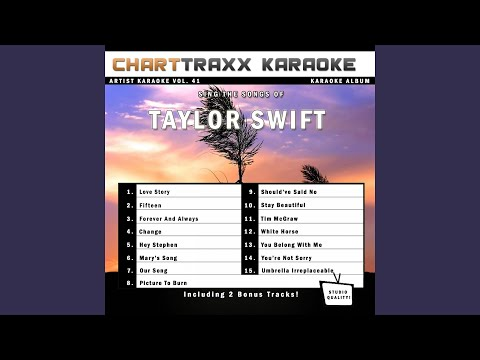 You Belong With Me (Karaoke Version In The Style Of Taylor Swift)