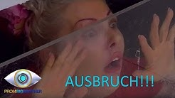 Kontakt zur Außenwelt | Tag 11 | Promi Big Brother 2015 | SAT.1
