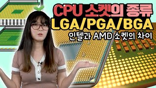 CPU 소켓의 종류 / LGA, PGA, BGA가 대체…
