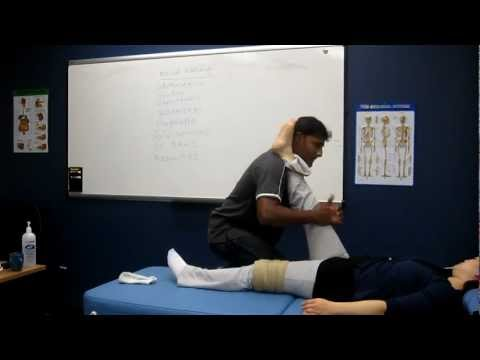 Manual passive Stretching Skeletal muscles