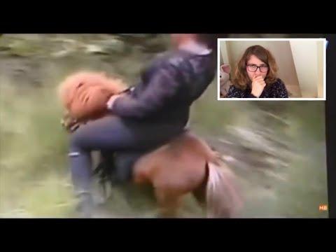 Reageren op paardenmishandeling video's