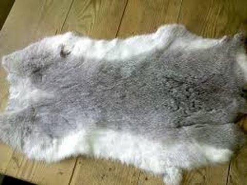 обработка шкурок кролика