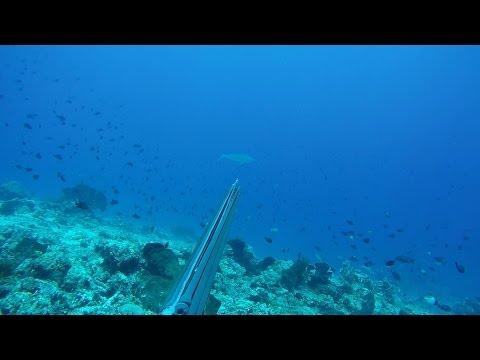 Spearfishing GREEN JOB FISH and GT on Arakan Spot, North Sulawesi - Indonesia