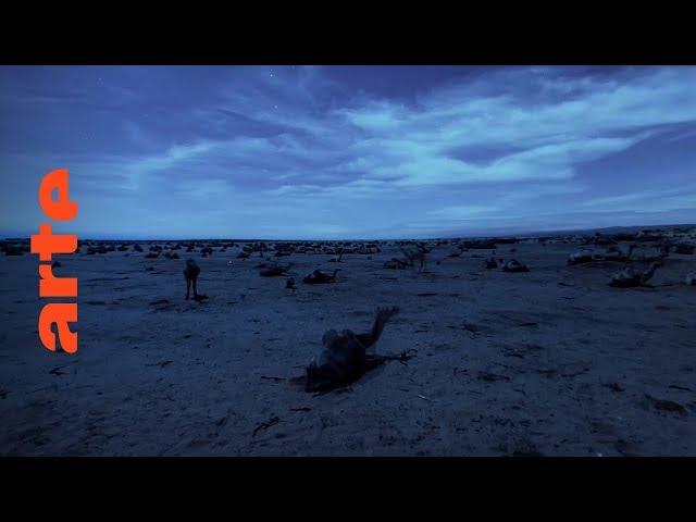 Äquator (Folge 2): Lügende Sterne | 360° Video | ARTE