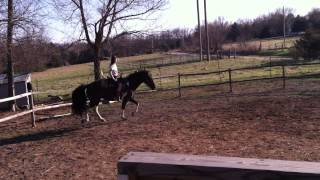 Paris and Dandy first ride in the new round pen