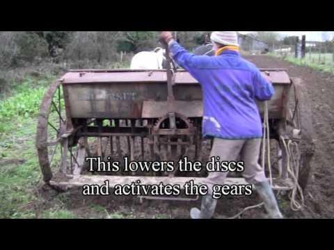 Planting Winter Oats -- Fail!