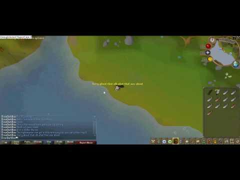 Runescape 2nd Best Fly Fishing Spot