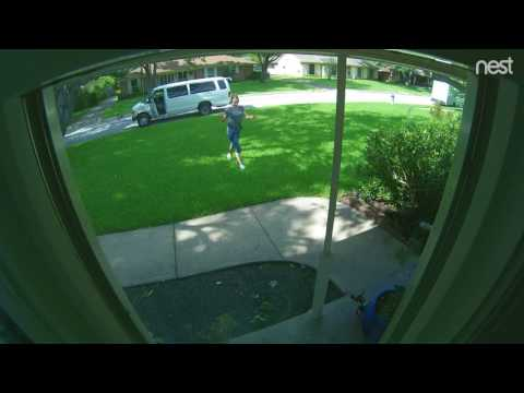 Dallas Package Thief - Royal Lane