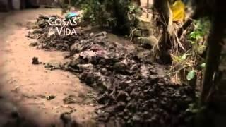 COSAS DE LA VIDA EN TAMAZUNCHALE