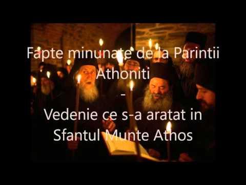 1  Fapte minunate de la Parintii Athoniti - Vedenie ce s a aratat in Sfantul Munte Athos