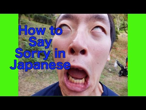 """Learn Japanese Lessons, How To Say Sorry In """"Japanese"""""""