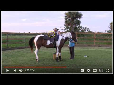 Starting or Breaking A Horse - The Good & Bad - Importance Of Forward Movement