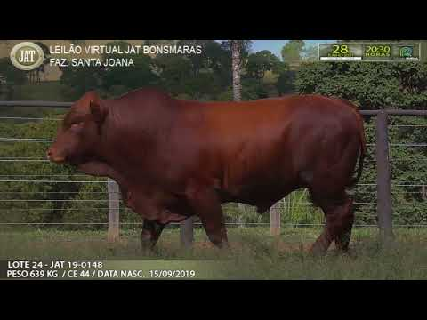LOTE 024
