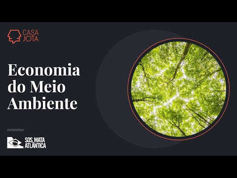 Economia do Meio Ambiente e lançamento do livro 'Nem Negacionismo Nem Apocalipse' | 29/03/21