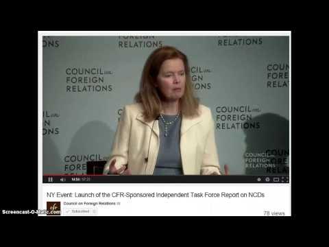 CFR- Gov NGO and Corp partnership??