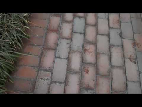 Chris Orser Landscaping; Brick Walkway Installations